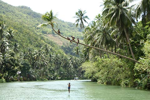 Children Jumping into Loboc River
