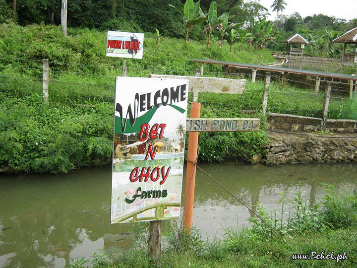 Bet 'n Choy Farm and Fishpond