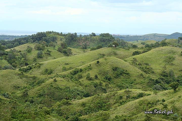 Bohol Beautiful Landscapes of Bohol