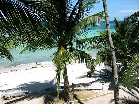 A Beach on Panglao
