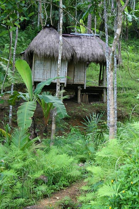 Bamboo Garden Hut